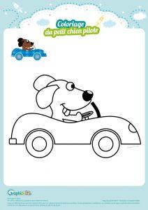 coloriage-chien-pilote