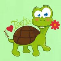 tee shirt enfant bébé tortue