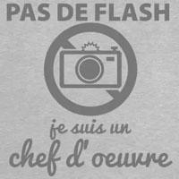 tee shirt pas de flash je suis un chef d'oeuvre