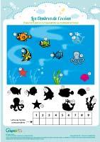 L'activité du mercredi : Le jeu des ombres de l'océan